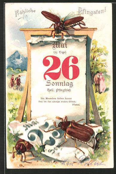 Lithographie Fröhliche Pfingsten!, Sonntag, 26. Mai, Maikäfer und Kalender