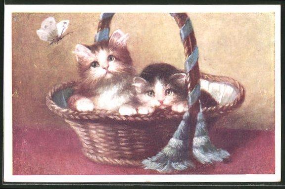 AK hübsche Kätzchen mit Schmetterling im Korb sitzend