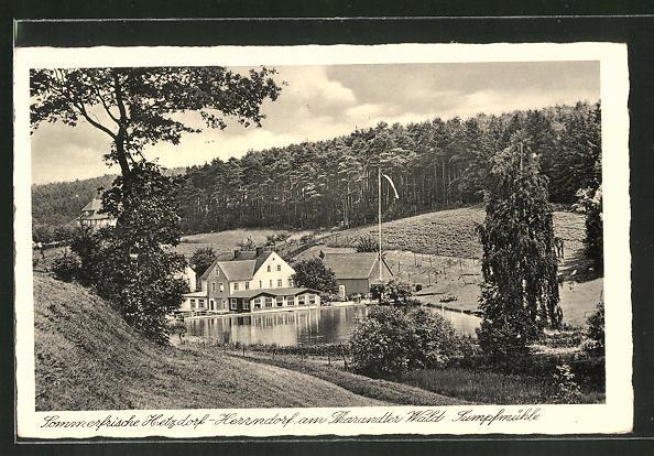 AK Hetzdorf-Herrndorf, Sumpfmühle am Waldrand