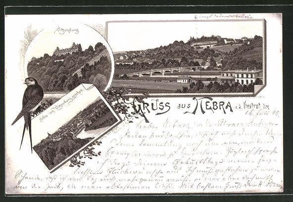 Lithographie Nebra a. d. Un., Vitzenburg, Ortsansicht von der Vitzenburg aus gesehen