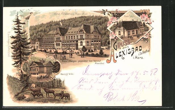 Lithographie Alexisbad i. Harz, Hotel Försterling, Herzogliche Villa