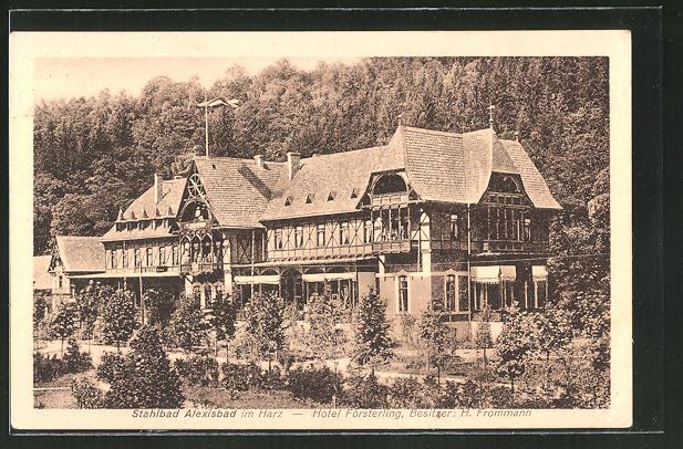 AK Alexisbad / Harz, Hotel Försterling