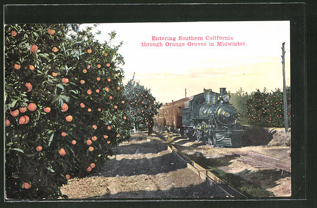 AK Entering Southern California through Orange Groves in Midwinter, Eisenbahn