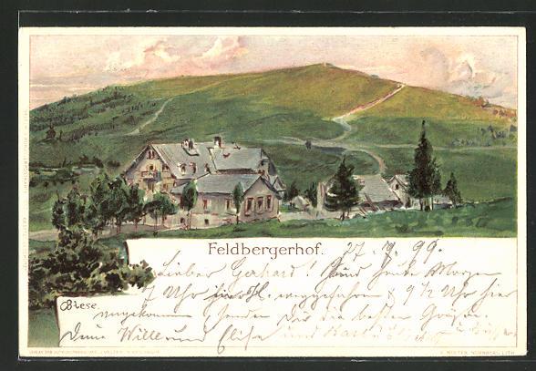 Künstler-AK Carl Biese: Feldberg, Partie am Feldberghof