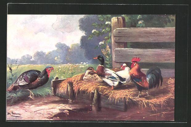 Künstler-AK Alfred Schönian: Rassegeflügel, Enten, Hühner und Pute