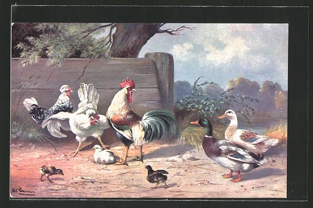 Künstler-AK Alfred Schönian: Hühner und ein Entenpaar