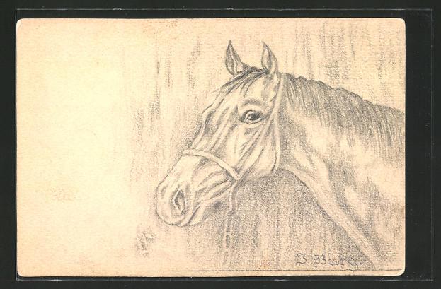 Künstler-AK Handgemalt: Portrait eines Pferdes, sign. J. Burg