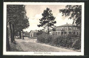 AK Ostseebad Haffkrug, Häuser an einer Strasse