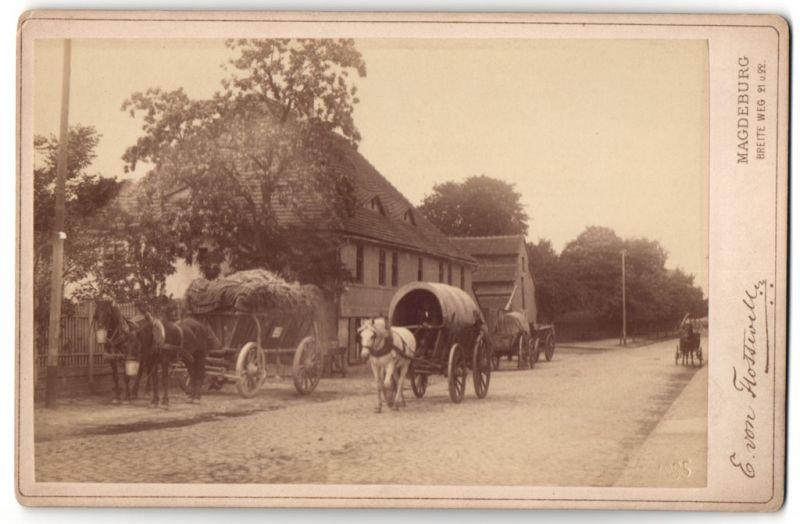 Fotografie E. von Flottwell, Magdeburg, Ansicht Magdeburg, der