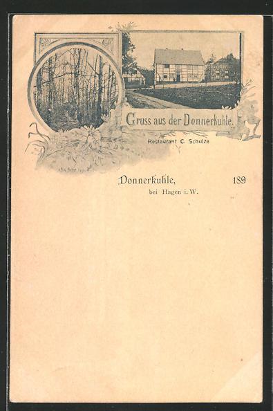 AK Donnerkuhle b. Hagen i. W., Weg zum Haus Donnerkuhle, Waldpartie