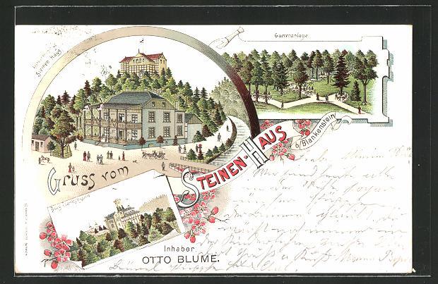 Lithographie Blankenstein, Gasthaus Steinen-Haus, Burg, Gartenanlage
