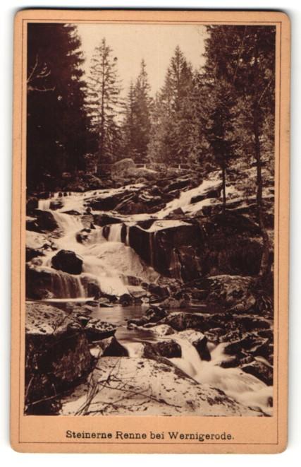 Fotografie E. Rose, Wernigerode, Ansicht Wernigerode, Wildbach Steinerne Renne