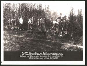 Fotografie Fotograf unbekannt, Ansicht Rathenow, 30000 Morgen Wald abgebrannt, Reichswehr & Schupo bei Aufräumarbeiten
