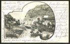 AK Madeira, Blick auf ein Dorf in Küstennähe