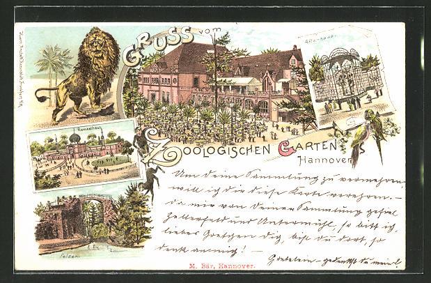Lithographie Hannover, Zoologischer Garten, Blick auf Löwe, Kamelhaus, Affenhaus und Felsen