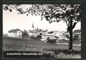 AK Oberneukirchen, Panorama