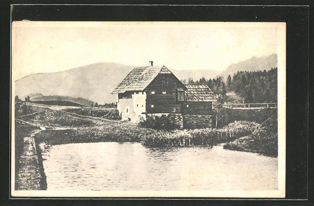 AK Neumarkt, Alte Mühle am Furtnerteich 0
