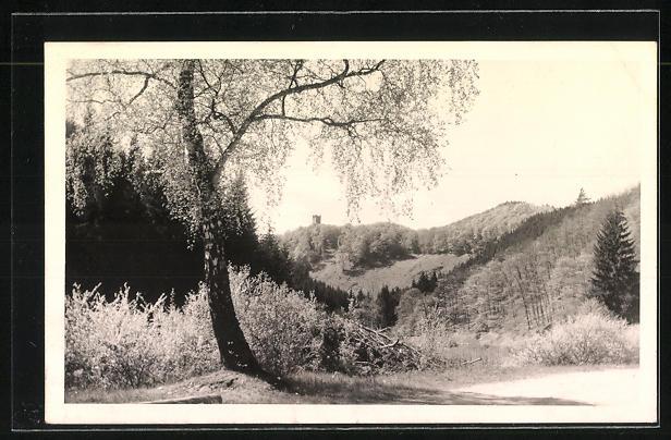 AK Landpoststempel Espenschied über Bad Schwalbach 1