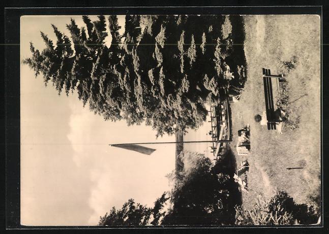AK Landpoststempel Diensdorf über Beeskow 1
