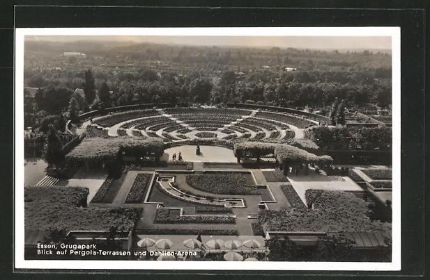 AK Essen, Grugapark, Blick auf Pergola-Terrassen und Dahlien-Arena, Gruga-Ausstellung 0