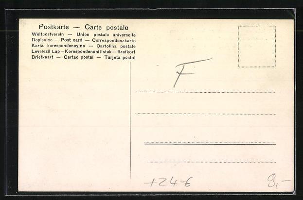 AK Müngsten, 150 jähr. Fichtenallee, Zerstörung durch Unwetter am 14. Aug. 1906 1