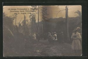 AK Müngsten, 150 jähr. Fichtenallee, Zerstörung durch Unwetter am 14. Aug. 1906
