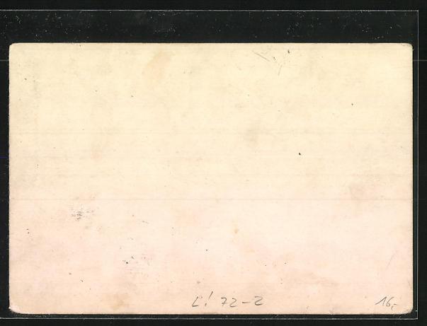 Lithographie Elberfeld, Schwebebahn mit Flusspartie 1