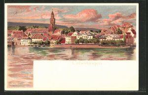 Lithographie Überlingen, Ortsansicht vom Wasser aus gesehen