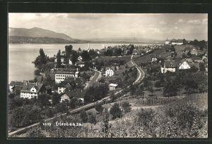 AK Erlenbach, Ortspartie am Zürichsee aus der Vogelschau