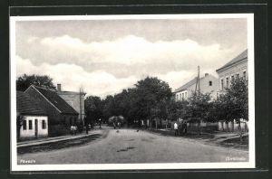 AK Päwesin, Blick in die Dorfstrasse