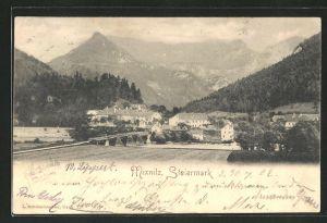 AK Mixnitz, Totalansicht mit Flusspartie
