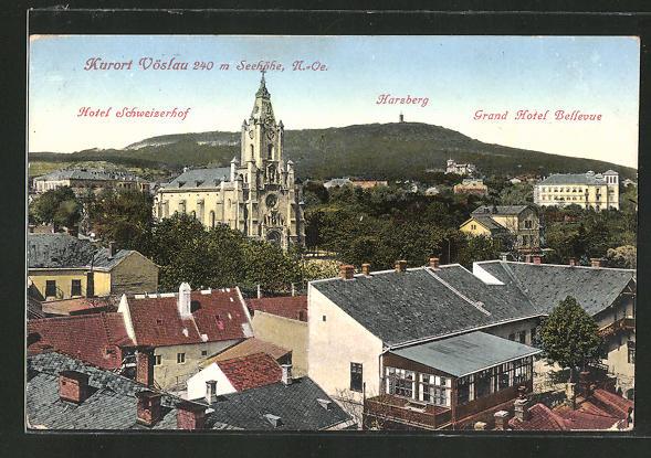 AK Vöslau, Panorama mit Hotel Schweizerhof, Harzberg & Grand Hotel Bellevue