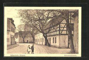 AK Schweinitz / Elster, Strassenpartie im Ort