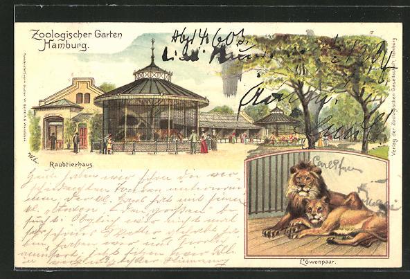 Lithographie Hamburg, Zoologischer Garten, Raubtierhaus, Löwenpaar