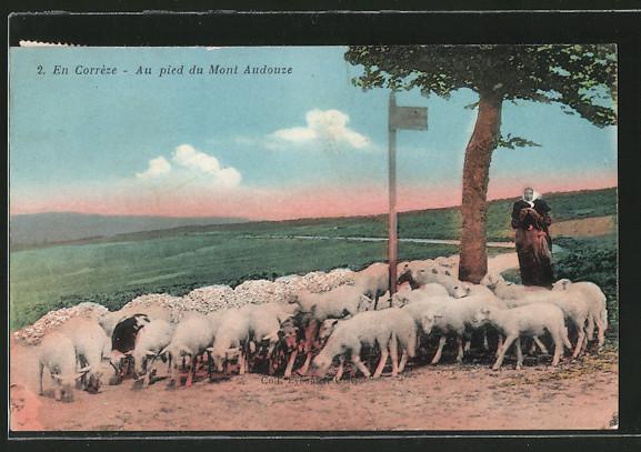 AK Corréze, Schäferin mit Schafherde unter einem Baum