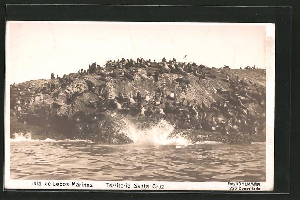 AK Argentinien, Seelöwen am Strand