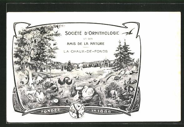 Lithographie La Chaux-De-Fonds, Société D'Ornithologie et des Amis de la Nature