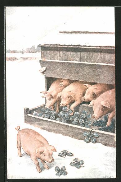 Künstler-AK C. Öhler: Schweine fressen Glücksklee