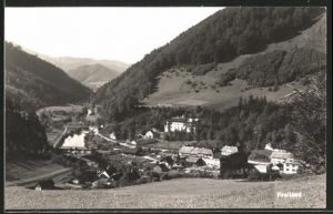 AK Freiland, Panorama
