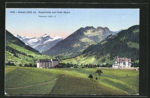 AK Gstaad, Ortsblick mit Royal-Hotel und Hotel Alpina