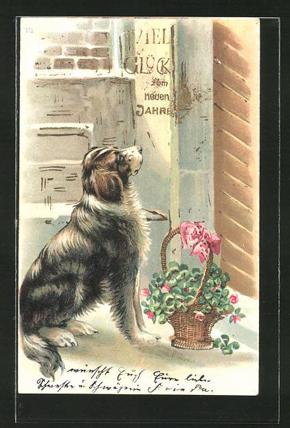 AK Hund bringt einen Blumenkorb ans Haus