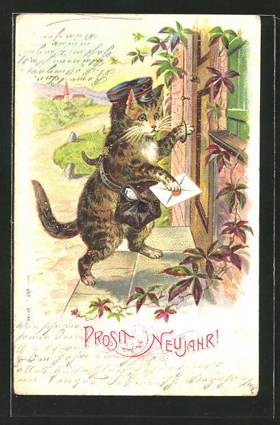 AK vermenschlichte Tiere, Katze bringt die Post