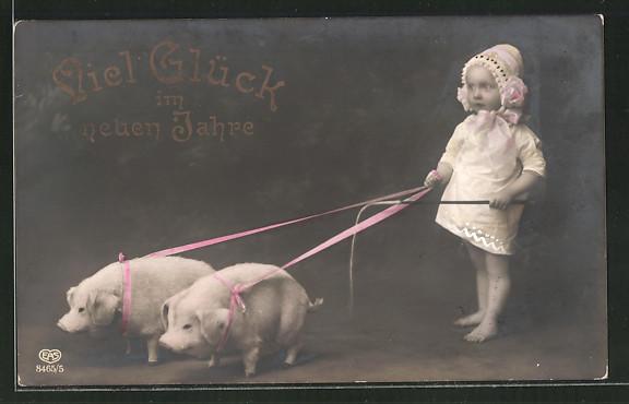 AK Kind führt Schweine an der Leine,