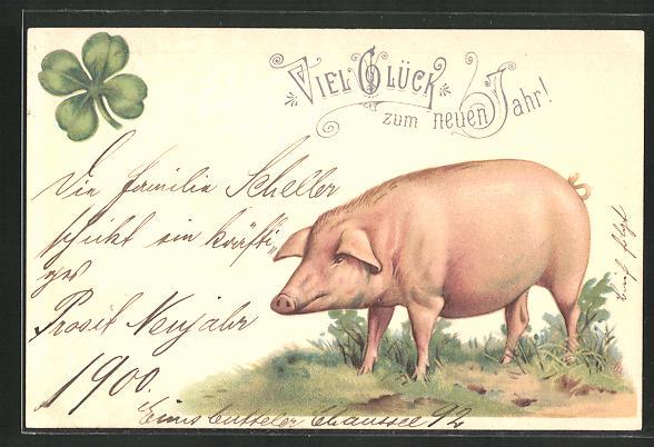 AK Neujahrsgruss, Schwein und vierblättriger Klee
