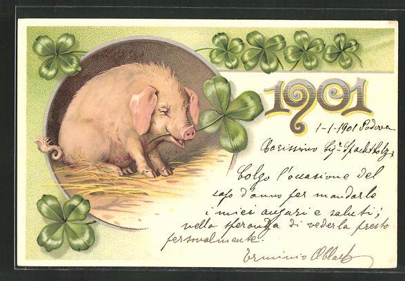 AK Neujahrsgruss 1901, Schwein und vierblättriger Klee