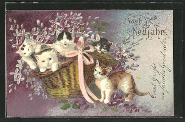 AK Kätzchen sitzen in einem Korb