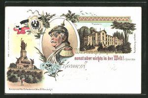 Lithographie Friedrichsruh, Schloss Friedrichsruh, Fürst Bismarck, Nationaldenkmal auf dem Niederwald