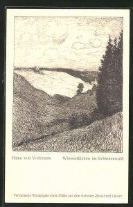 Künstler-AK Hans von Volkmann: Wiesentälchen im Schwarzwald