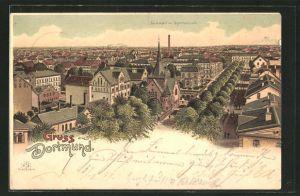 Lithographie Dortmund, Teilansicht mit Südwall-Strasse und Gymnasium