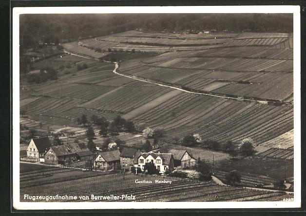 AK Burrweiler / Pfalz, Gasthaus Weinberg vom Flugzeug aus 0